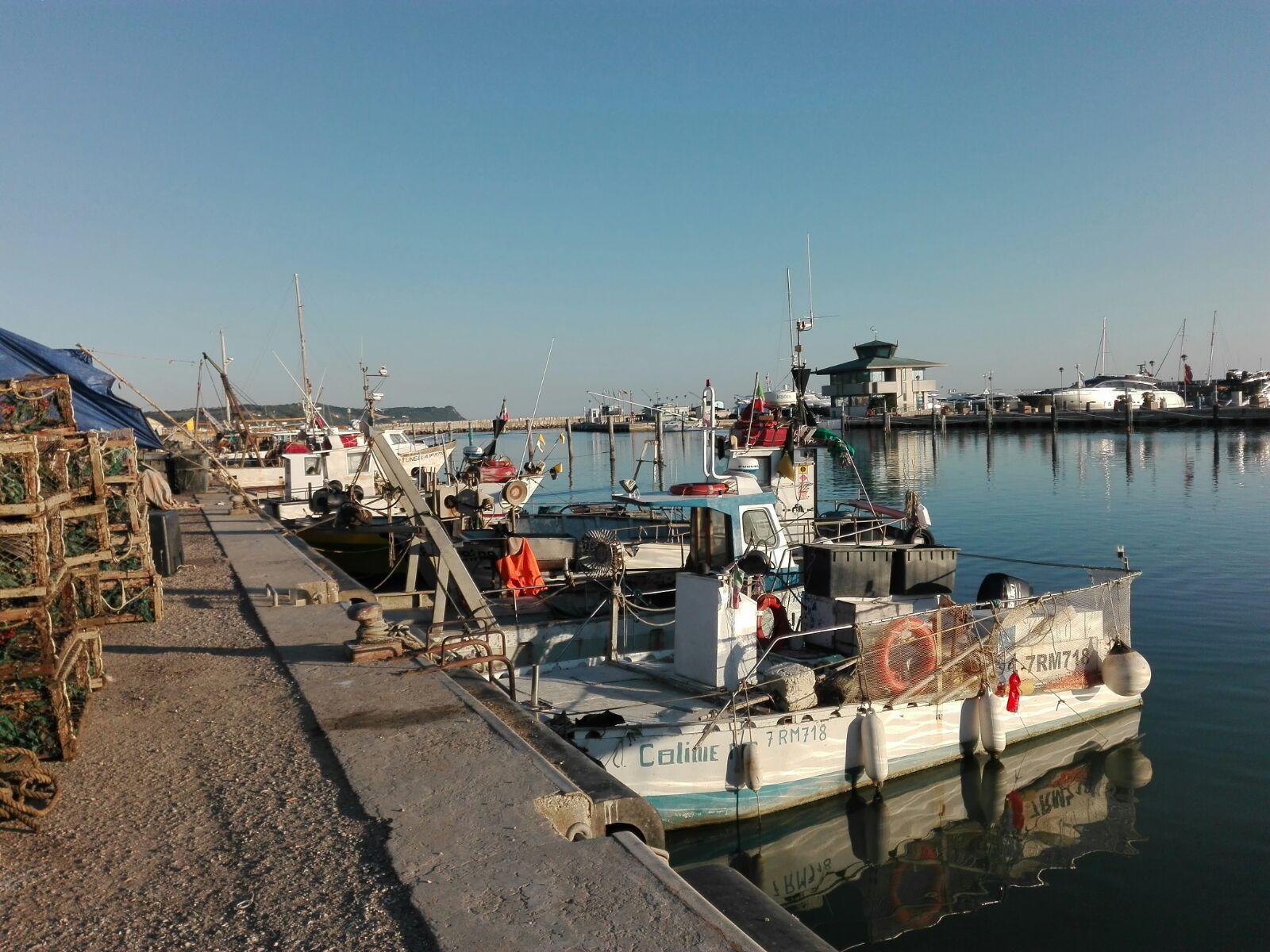 Pesca a Fano mercato i barchetti