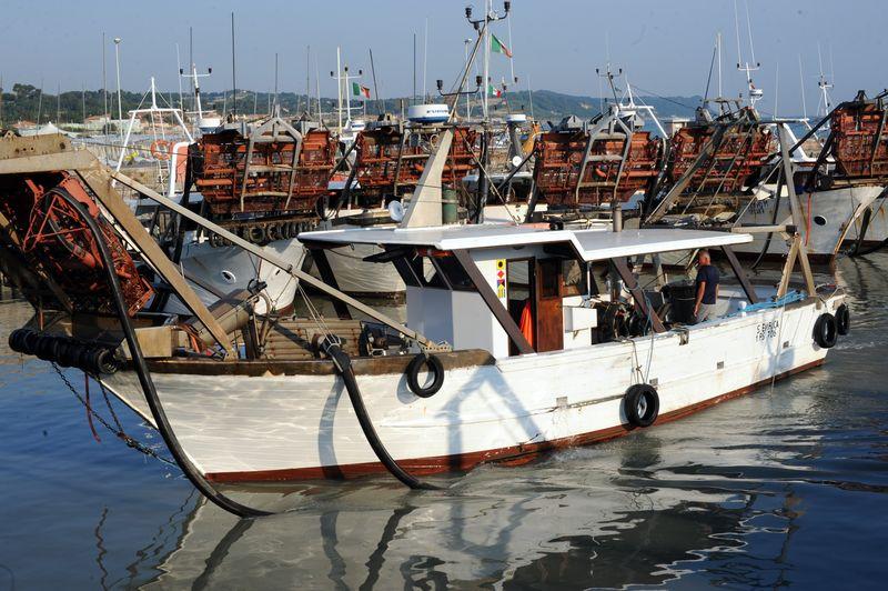 Brodetto alla Fanese Porto di Fano pescherecci